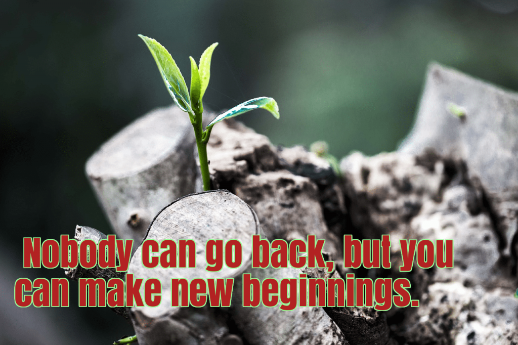 nobody can go back, but you can make new beginnings