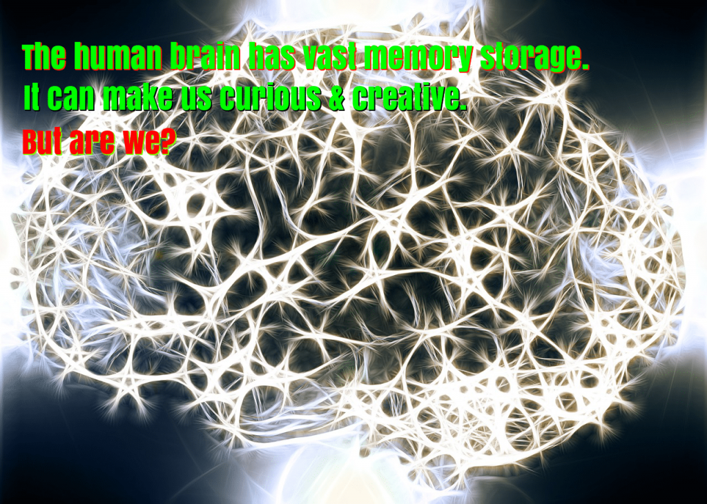 human brain has a vast memory storage, it can make us curious & creative